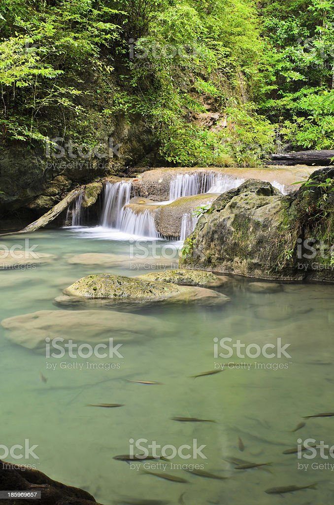 Cascade falls in tropical rain forest royalty-free stock photo