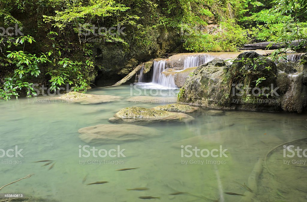 Cascade falls in tropical rainforest royalty-free stock photo