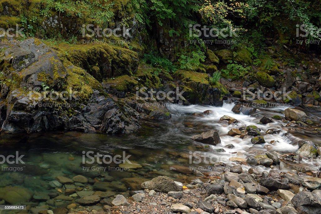 Cascade Mountain Stream stock photo