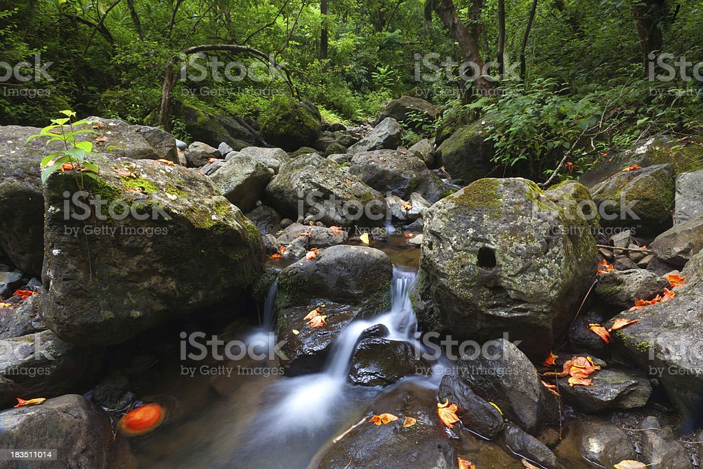 cascade near waikmoku falls - hawaii, maui royalty-free stock photo