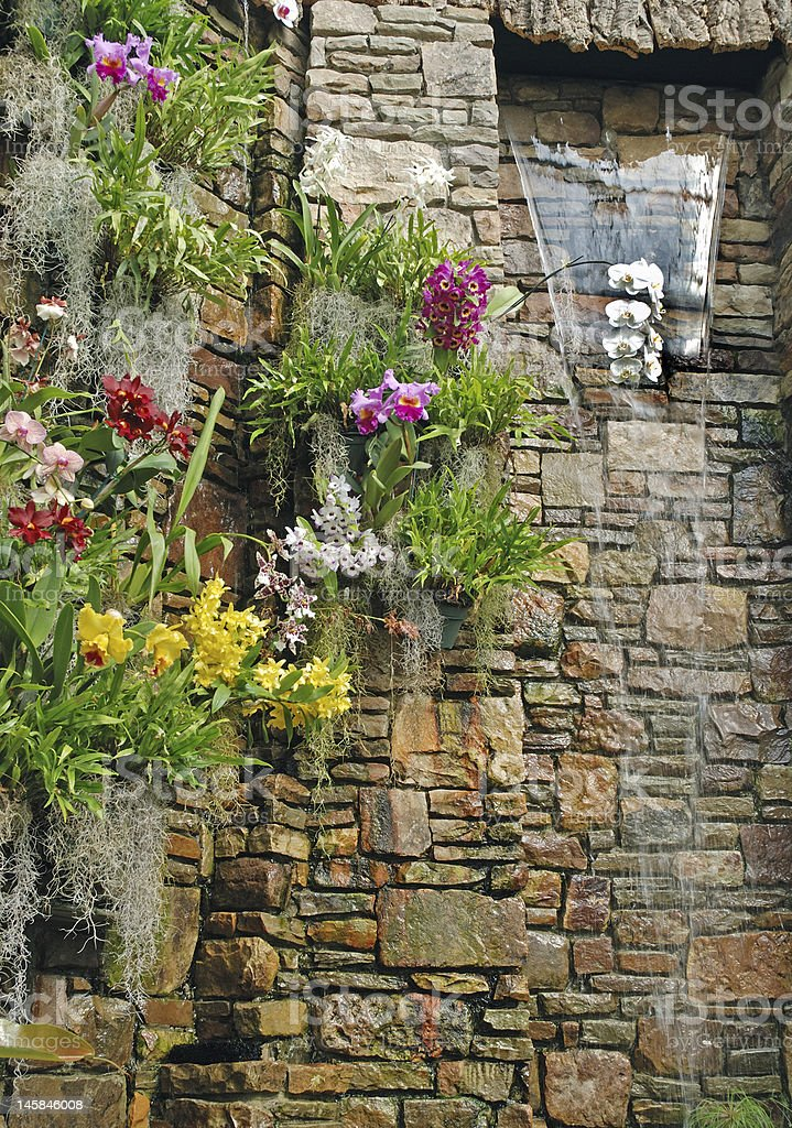 Cascade of Flowers on a Brick Wall royalty-free stock photo