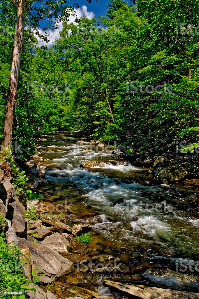 Cascades in Little Pigeon River in the Summertime stock photo