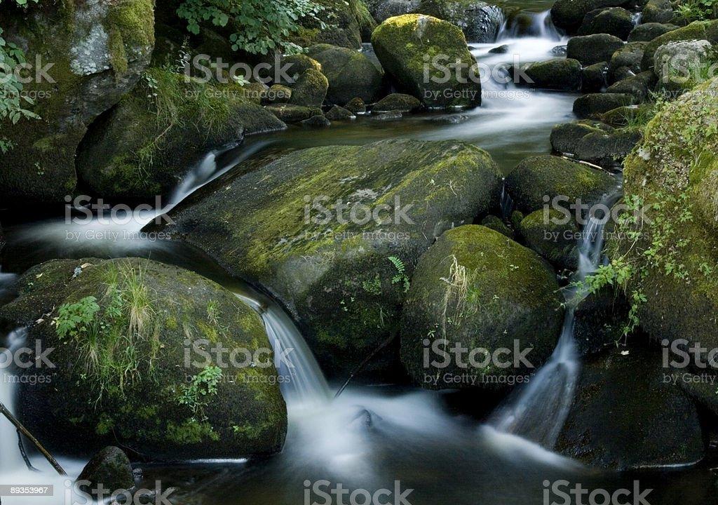 Cascading Mountain Stream royalty-free stock photo