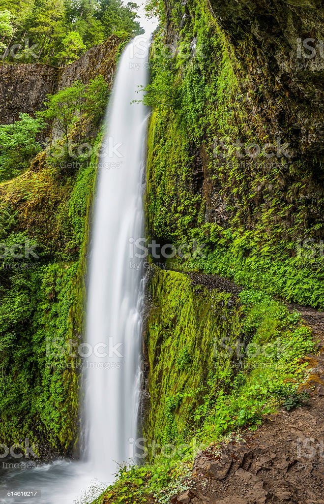 Cascading waterfall and trail Tunnel Falls PCT Oregon stock photo