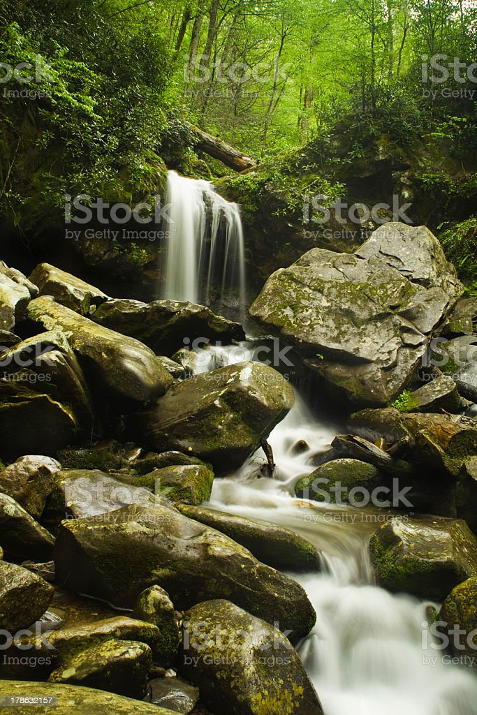 Cascading Waterfall in the Spring stock photo