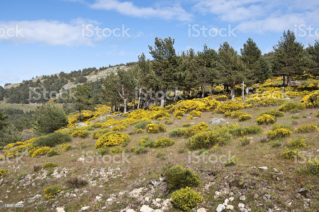 Casillas Mountain Pass stock photo