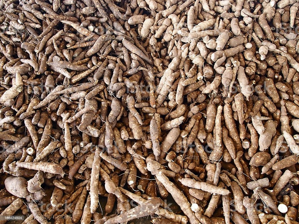 Cassava pile stock photo