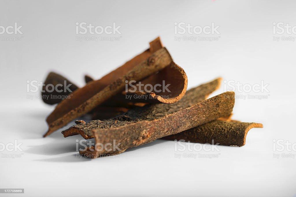 Cassia Sticks stock photo