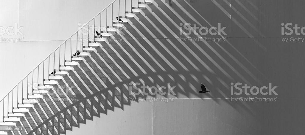 Cast Shadows On Oil Storage Tank stock photo