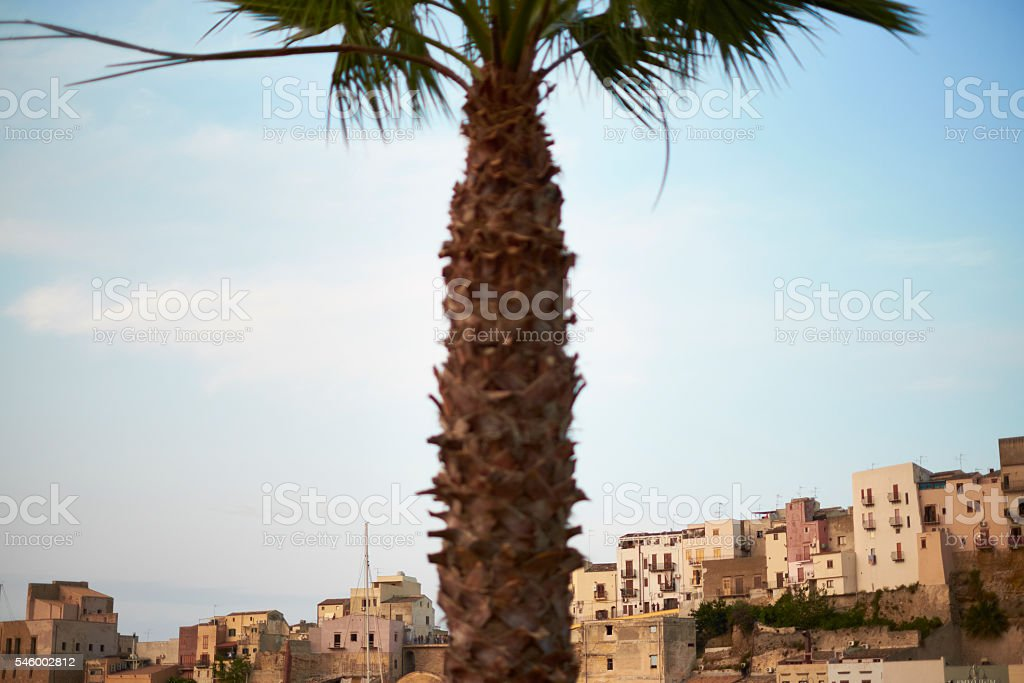 Castellammare del Golfo, Sicily - Townscape with palm stock photo