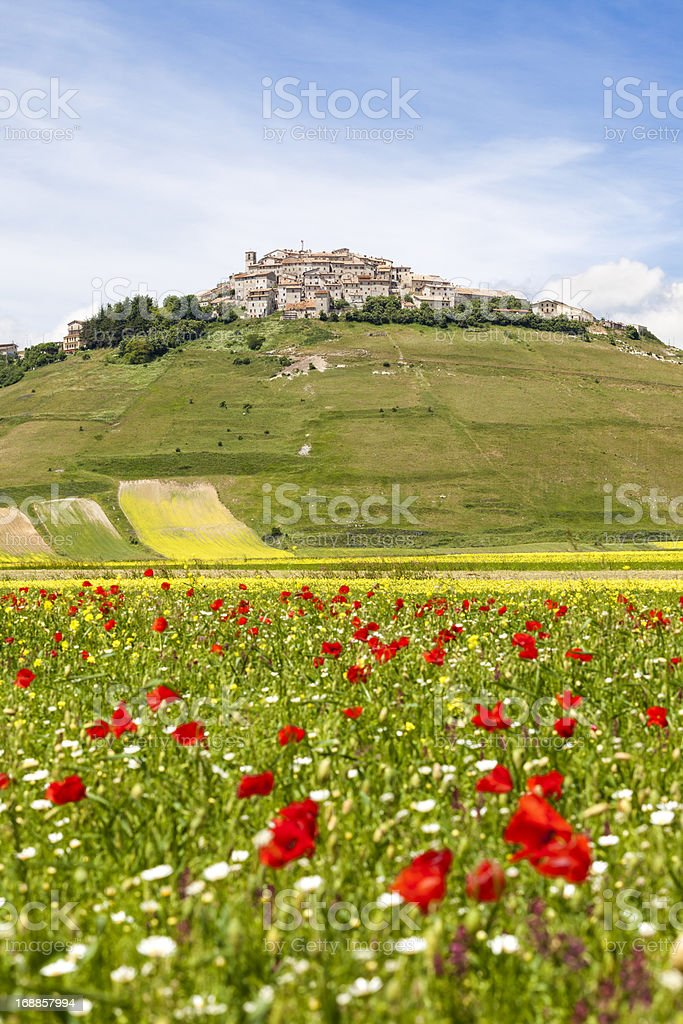 Castelluccio and meadow, Umbria Italy royalty-free stock photo