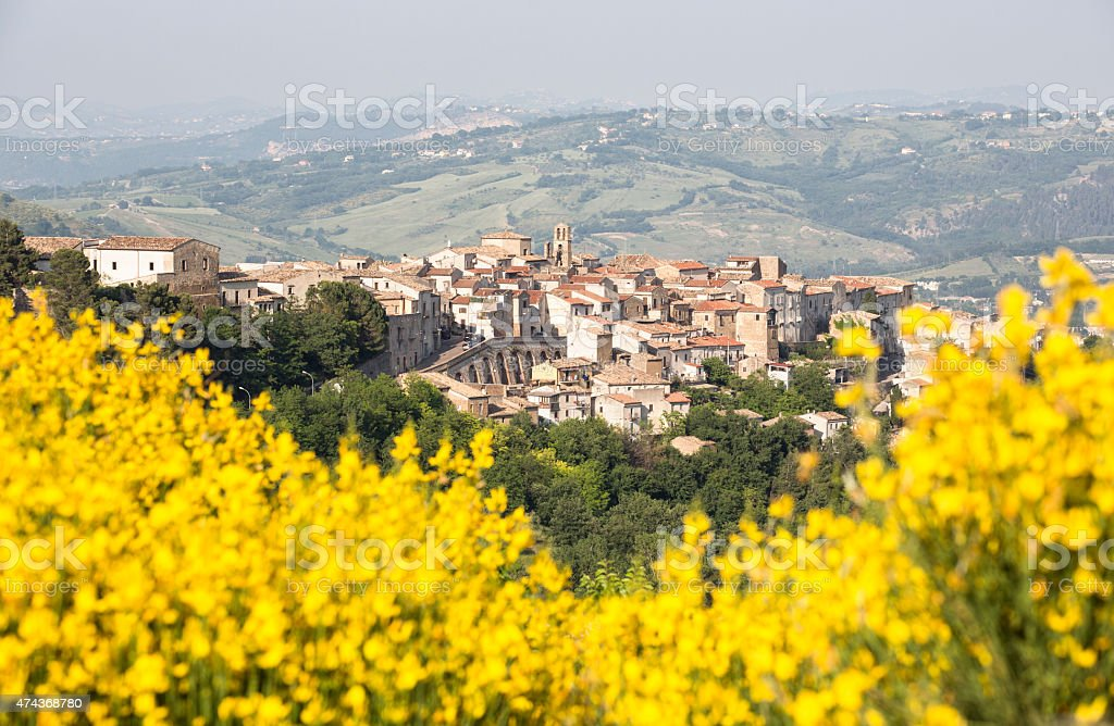 Castiglione a Casauria skyline with flowers, Abruzzi Italy stock photo