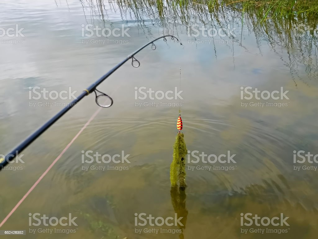 Casting out for fish and catching weeds stock photo