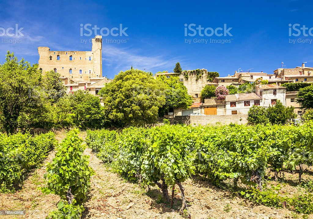Castle and vineyard in Chateneuf-du-Pape, Provence, France. stock photo
