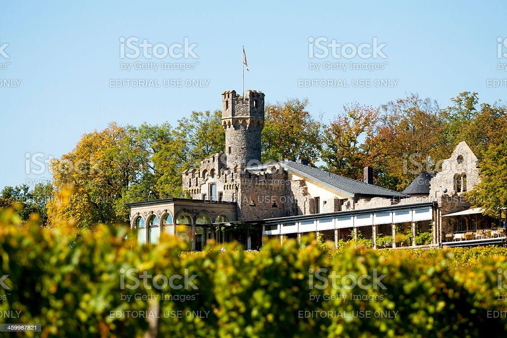 Castle Burg Schwarzenstein stock photo