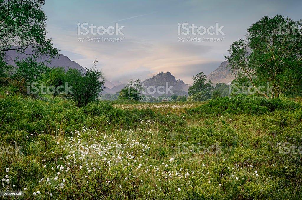 Castle Crag. stock photo