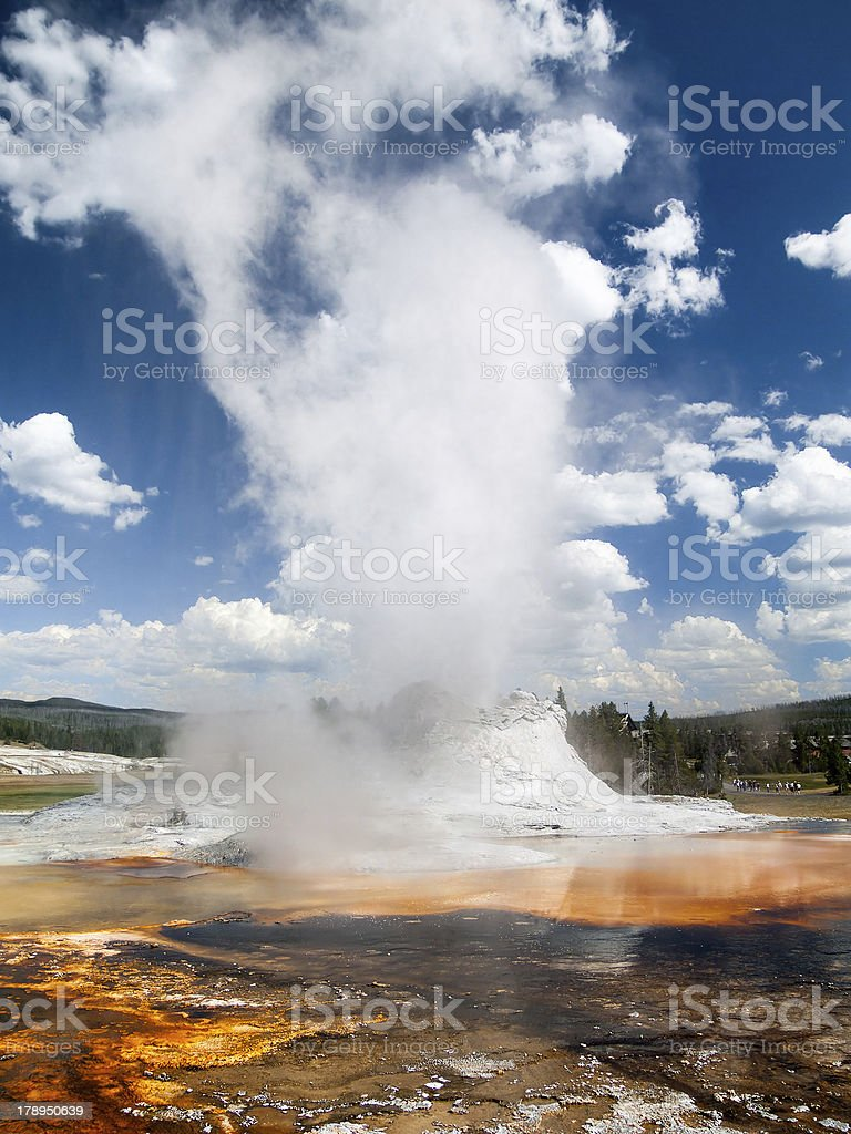Castle Geyser and Steam in Yellowstone royalty-free stock photo