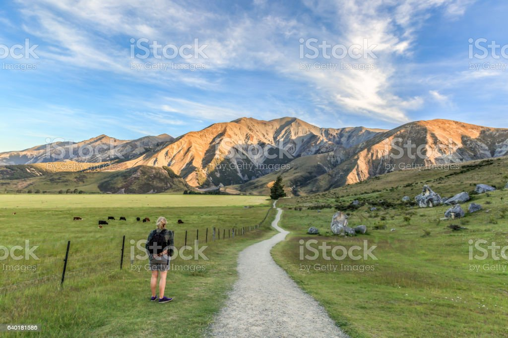 Castle Hill path in New Zealand stock photo