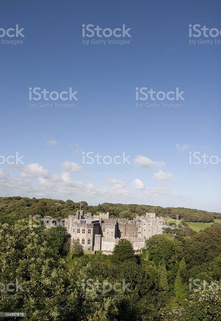 城の中央で森 ロイヤリティフリーストックフォト