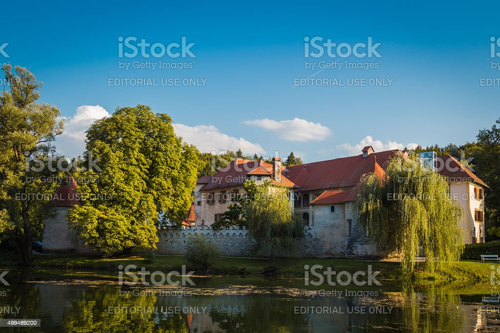 Castle in the middle of the river. stock photo
