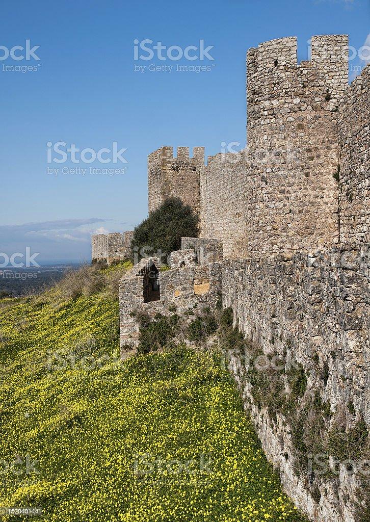 Castle Landscape Portrait royalty-free stock photo
