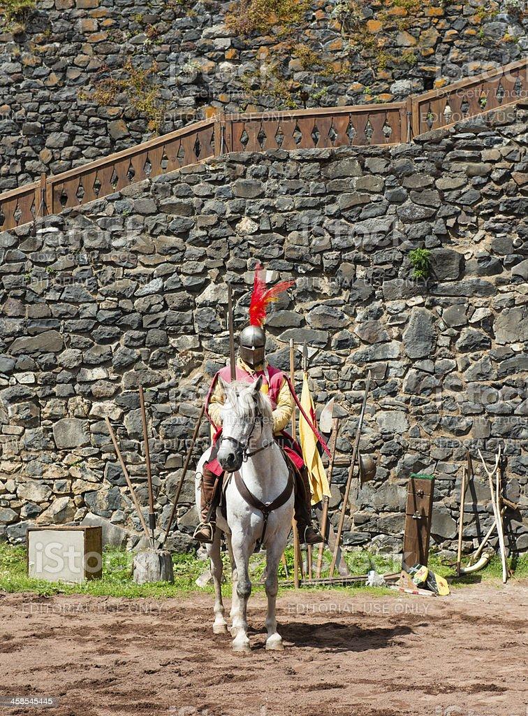 castle of Murol royalty-free stock photo
