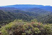 Castle Rock California USA Hiking View