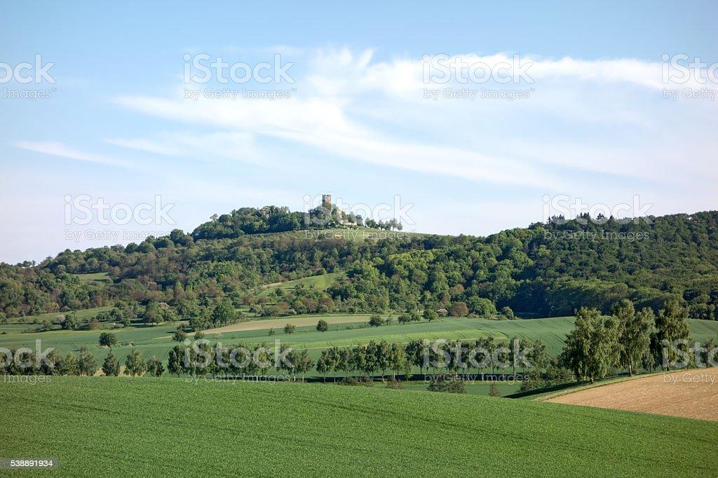 Castle Steinsberg stock photo