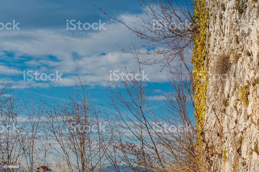 Castle wall. stock photo