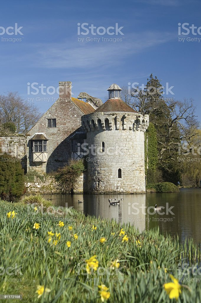Castle with dafodills royalty-free stock photo
