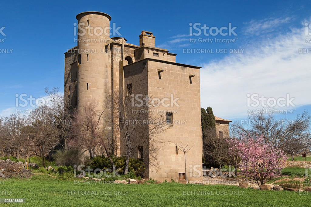 Castle-Mill of Ratera stock photo