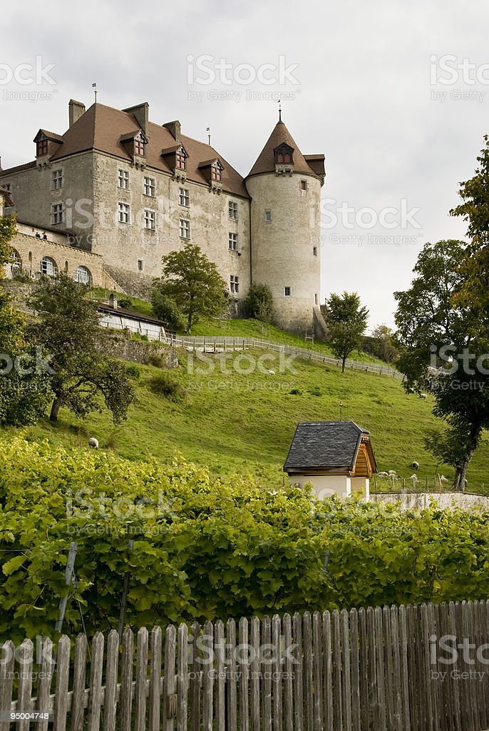 Chateaux un Gruyeres royalty-free stock photo