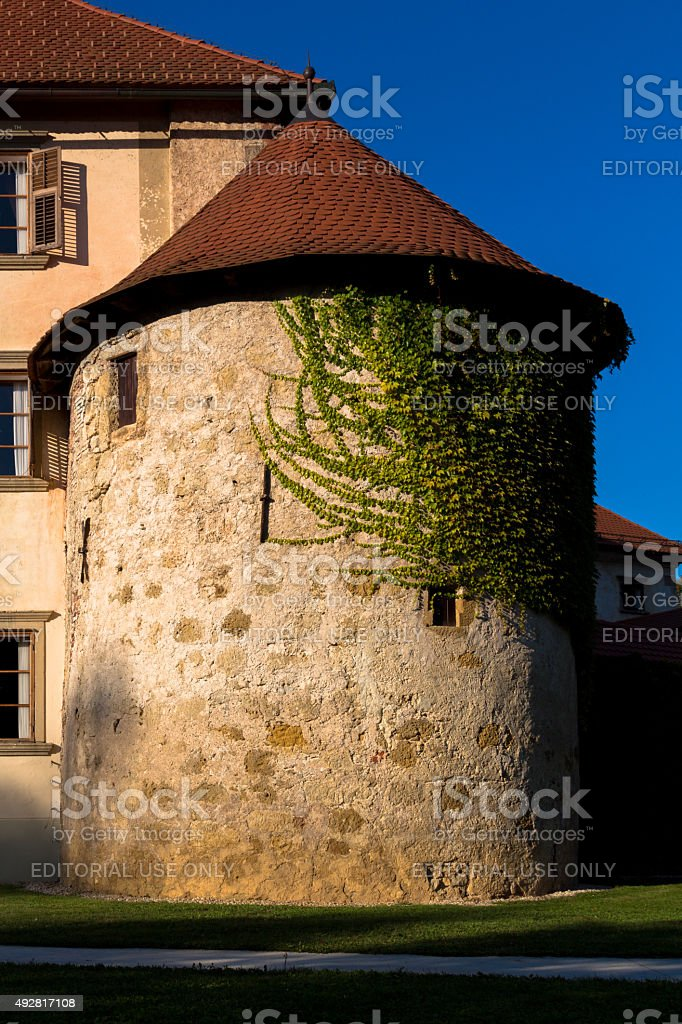 Castle's tower. stock photo
