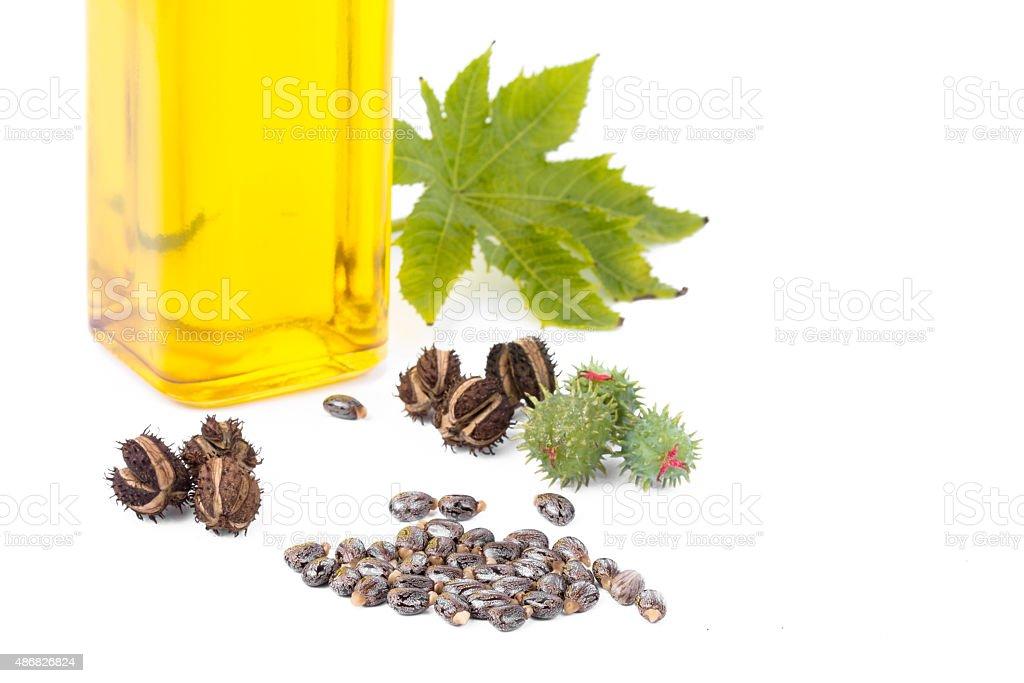 Castor oil stock photo