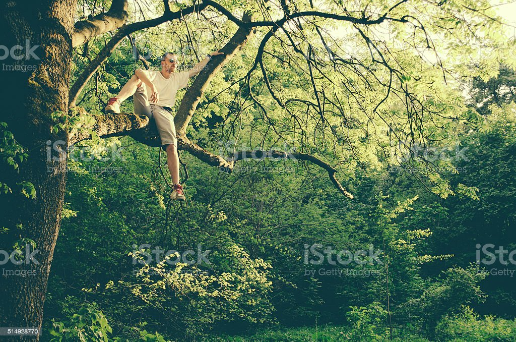 Casual guy relaxing on the tree branch stock photo