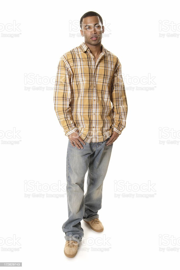 Casual Male IV royalty-free stock photo