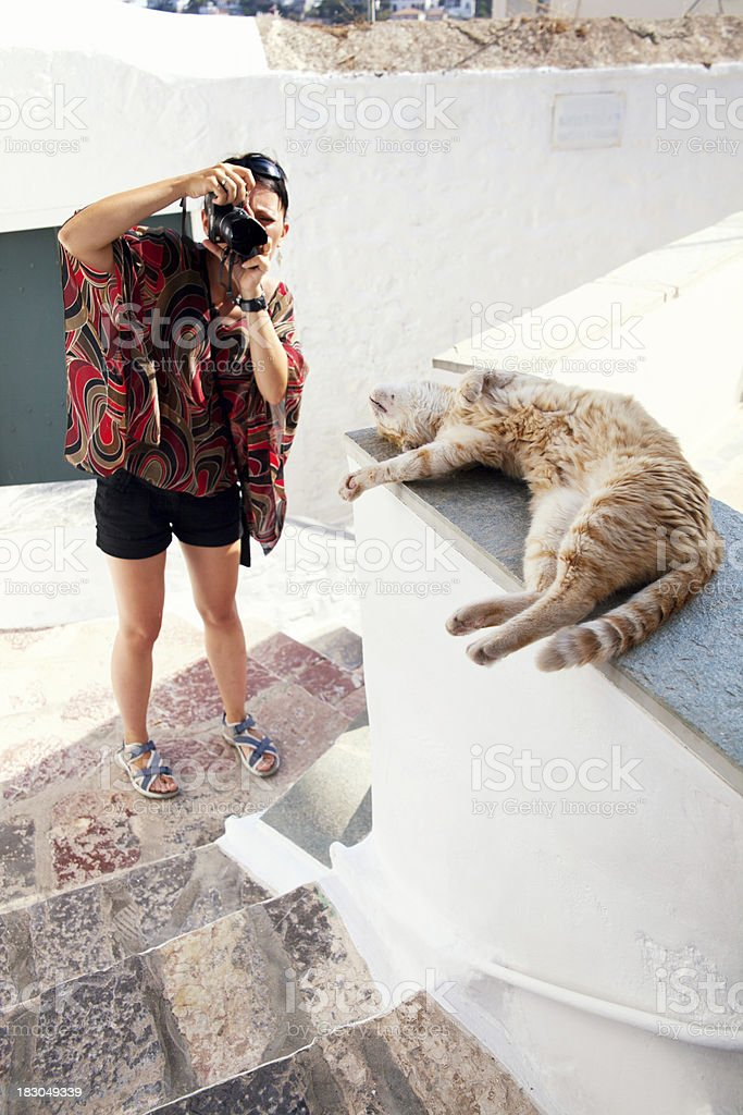 Cat And Female Photographer royalty-free stock photo