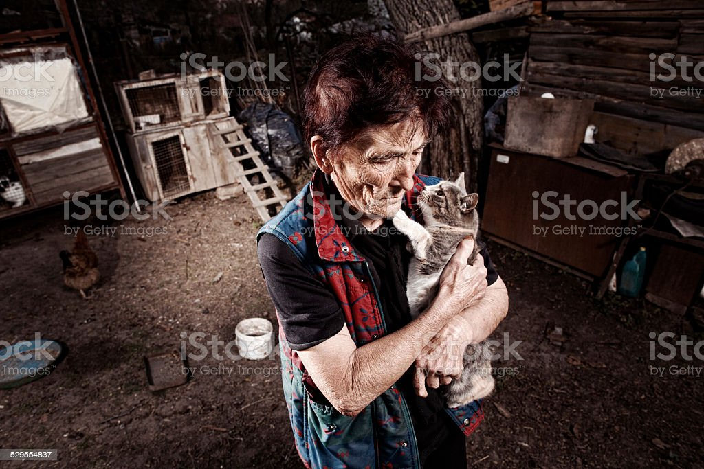 Cat and senior woman stock photo