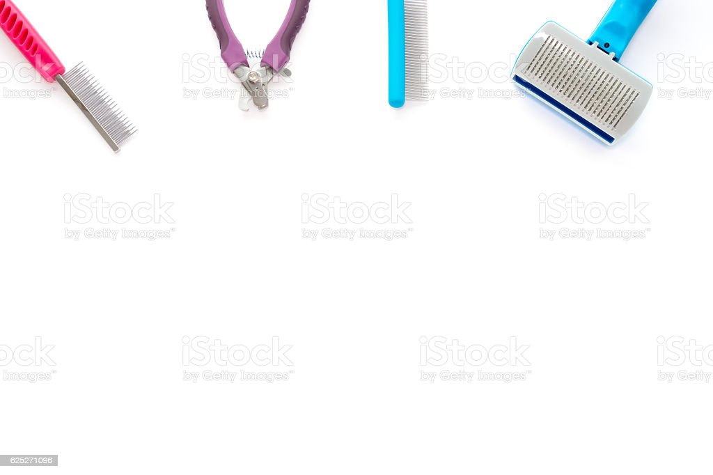 Cat and Small Dog Grooming Tools stock photo