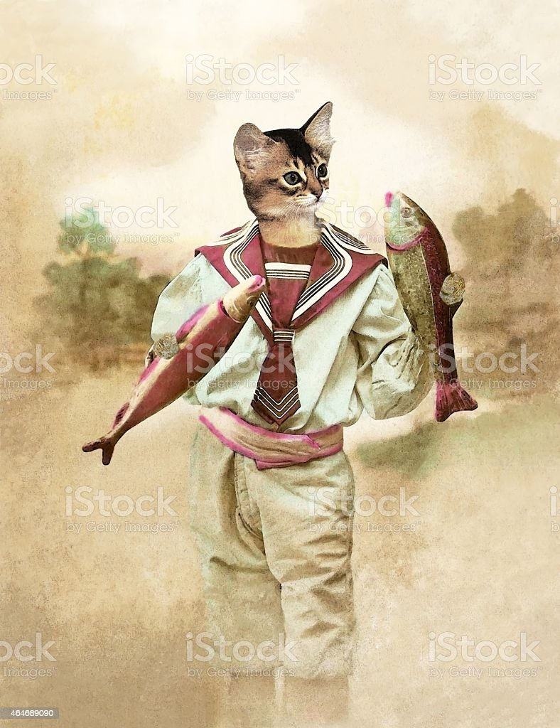 Cat April fool stock photo