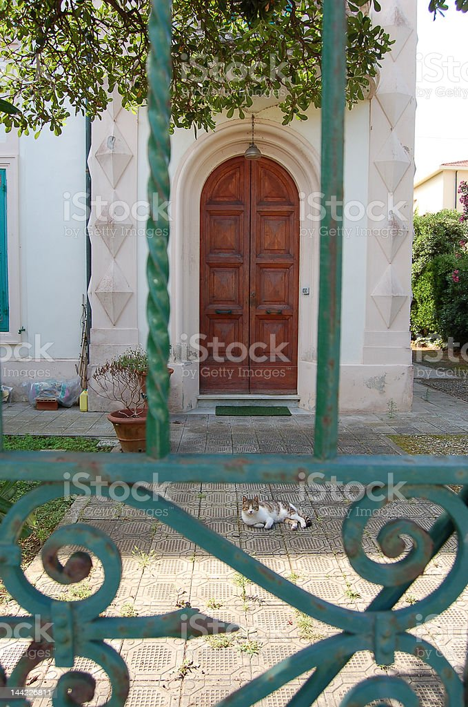 Cat at the front door royalty-free stock photo