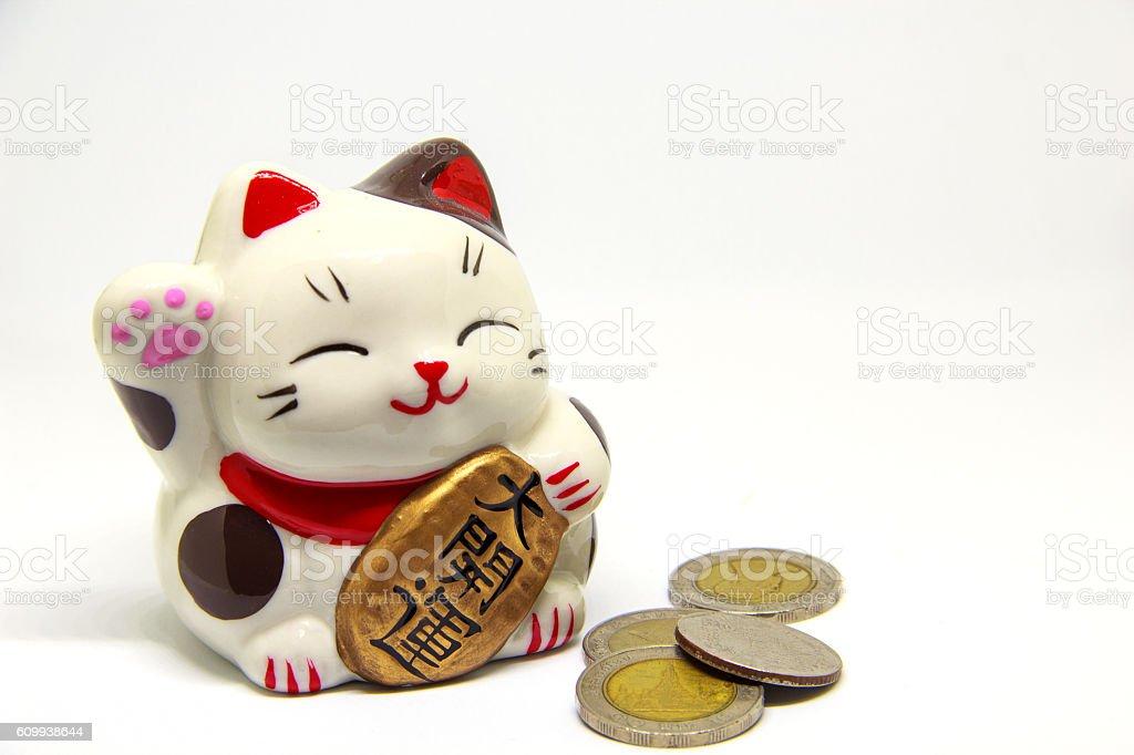 cat beck money stock photo