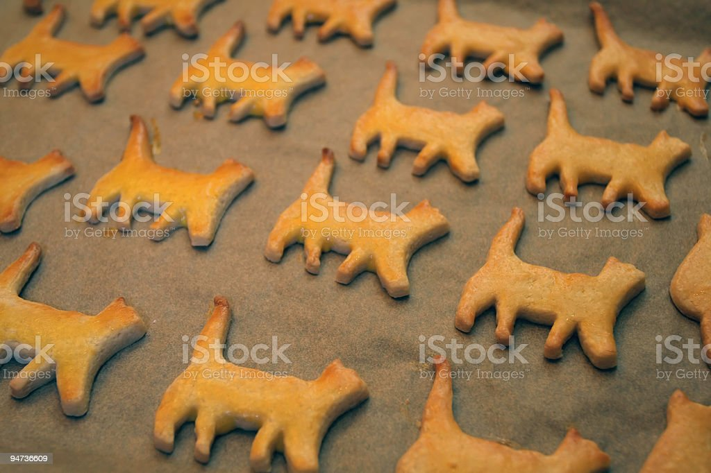 Cat Cookies royalty-free stock photo