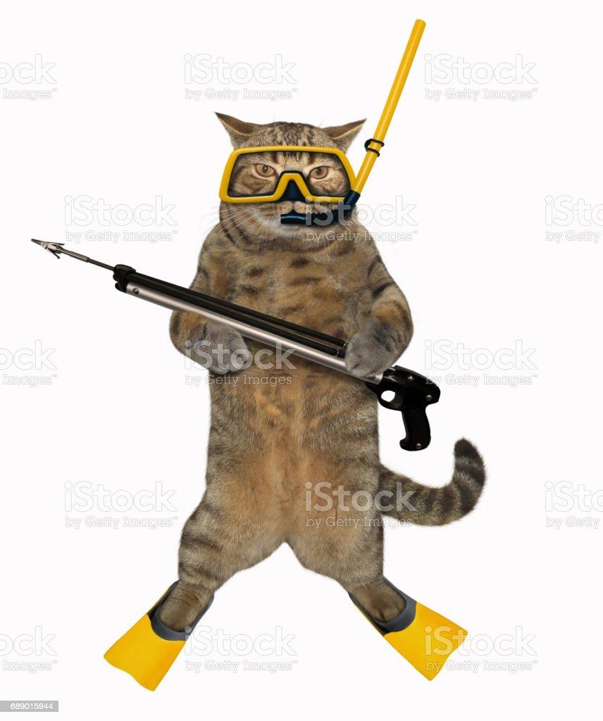 Cat diver 3 stock photo