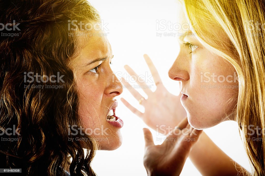 Cat fight. Two infuriated girls arguing intensely stock photo