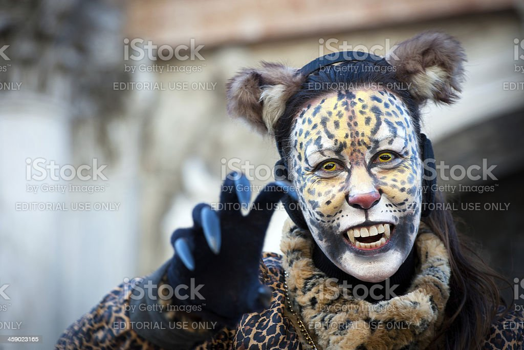 Cat Mask Carnival 2013 San Marco Venice Italy royalty-free stock photo