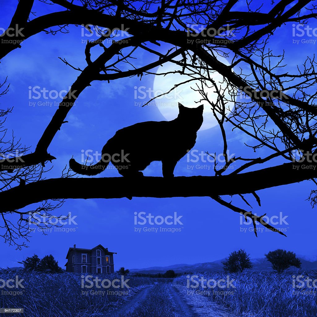 Cat Silhouette (Ver.2) royalty-free stock photo