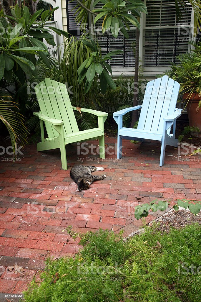 Cat Sleeping In Tropical Garden royalty-free stock photo