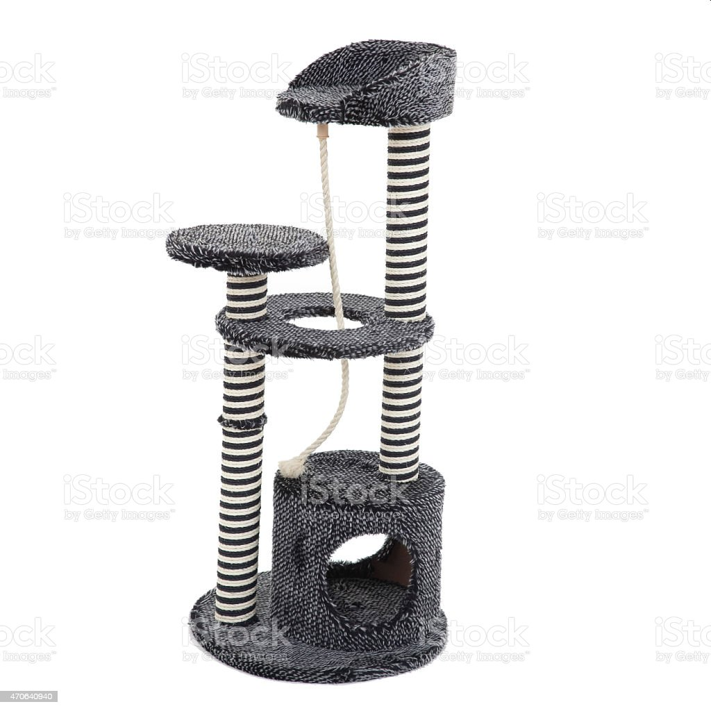 Cat Tree and Scratch post stock photo