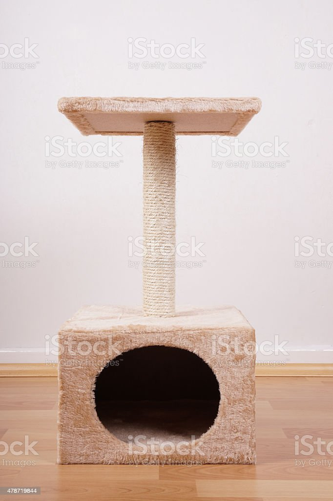 cat tree or tower stock photo